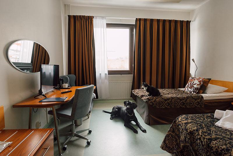 lemmikkihuone hotelli kumpu outokumpu